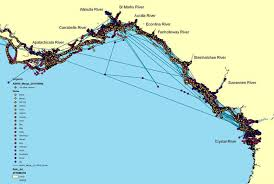 Map Of Northern Mexico by Northern Gulf Of Mexico Manatee Gps Distribution Map
