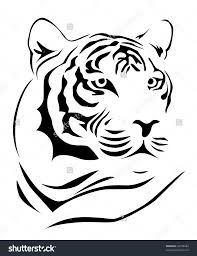 tiger side face sketch drawing of a tiger face drawing art
