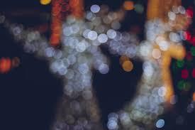 defocused bokeh lights of christmas deer photo premium download