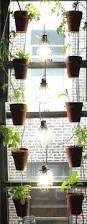 Urban Gardening Bangalore 12 Best U0027ponics Images On Pinterest Aquaponics Farms And