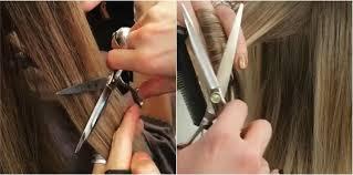 comment couper ses cheveux hair dusting ou comment en finir avec les fourches sans couper