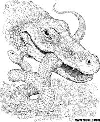 Reptile Coloring Pages By Yuckles Reptile Coloring Pages