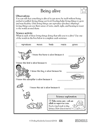 1st grade 2nd grade kindergarten science worksheets being alive