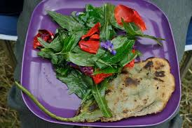 cuisine plantes sauvages comestibles séjours autour des plantes sauvages et comestibles aluna voyages