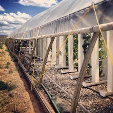 ray nesci bonsai nursery home wiggle wire and double layer greenhouses backyard ideas