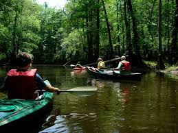 South Carolina national parks images The 58 national parks in the usa 13 congaree national park jpg