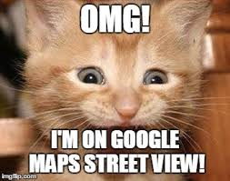 Sophisticated Cat Meme Generator - excited cat meme omg i m on google maps street view image