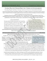 Senior Management Resume Examples by Senior Director Resume Samples Mary Elizabeth Bradford The