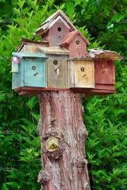 Pictures Of Tree Stump Decorating Ideas 37 Best Tree Stump Art Images On Pinterest Birdhouses Outdoor