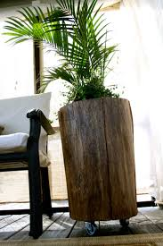 best 25 tree stump side table ideas on tree stump