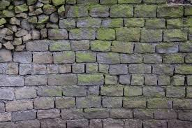 stone brick texturex brick rock stone algea grey green uneven dirty wall cracked