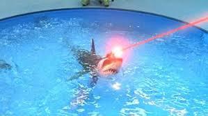 Laser Meme - sharks with frickin laser beams sharks know your meme