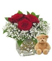 Teddy Bear Delivery Absolutely Flowers Inc Teddy Bear Delivery Ftd Florist Flower And