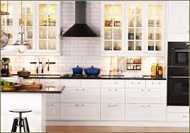 Kitchen Furniture Ikea by Ikea Kitchen Cabinet Doors White Modern Cabinets