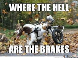 Funny Running Memes - run forrest run memes best collection of funny run forrest run