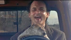 bill murray reenacts u0027groundhog day u0027 by going to see u0027groundhog
