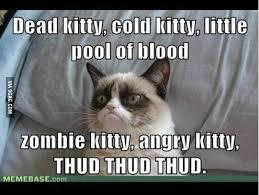 Soft Kitty Meme - soft kitty meme 28 images soft kitty warm kitty little ball of