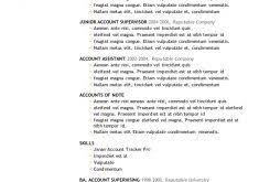 fantastical resume examples word 10 7 free templates cv resume ideas