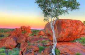 old spinifex rings little sandy desert australia wallpapers desert full hd wallpapers search page 1