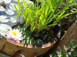 248 best container water gardens images on pinterest ponds