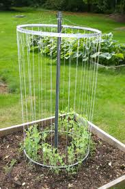top 7 gorgeous garden trellis projects nifty diys