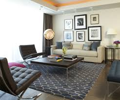 Modern Accent Rugs Living Modern Area Rugs For Living Room