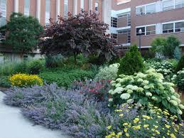 perennial garden design for evergreen garden franklinsopus org