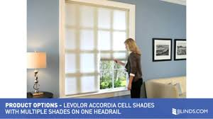 levolor accordia cellular with multiple blinds on one headrail