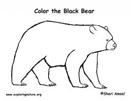 incredible and also attractive black bear coloring page with