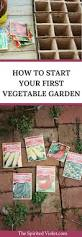 how to start your first vegetable garden the spirited violet