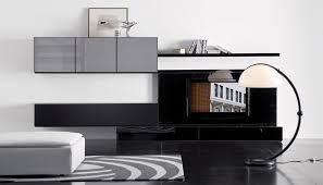 Modular Cabinets Living Room Thanks For Saving Living Room Storage Cabinets Hometutu Com