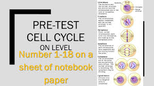 pre test cell cycle on level ppt video online download