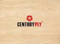 century plywood centuryply plywood ghaziabad get centuryply plywood prices rates