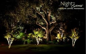 Landscape Tree Lights Image Of Led Landscape Lighting Ideas Lighten Up Pinterest