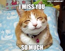 Miss You Meme - i miss you memes miss you images