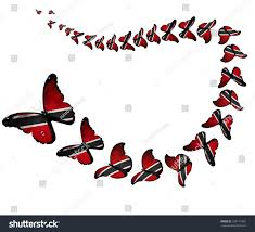 Flag For Trinidad And Tobago Exotic Trinidad Tobago Flag Butterflies Flying Stock Illustration