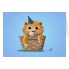 kitten birthday wishes gifts kitten birthday wishes gift ideas