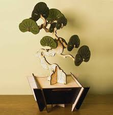 flat packed yew bonsai tree kit by pack u0026 tickle