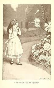 126 Alice Wonderland Mis Ilustraciones Images