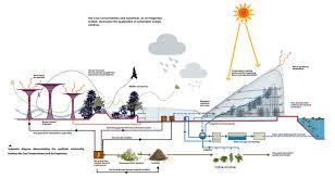sustainability efforts