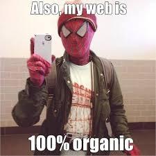 Organic Meme - hipster spiderman 100 organic web memes and comics