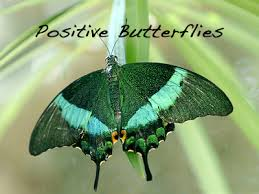 positive butterfly just when the caterpillar thought its was