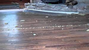 removing carpet hardwood floors