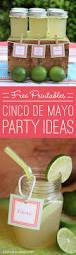 birthday margarita best 25 cinco de mayo party ideas on pinterest fiesta party