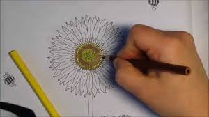 coloring sunflower secret garden creative coloring