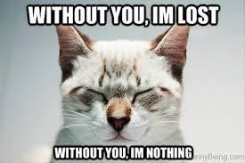 Romantic Memes - 22 romantic memes for your beloved sayingimages com