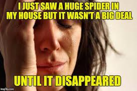Huge Spider Memes Image Memes - first world problems meme imgflip
