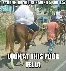 Broken Back Meme - broken horse back by mephisto pheles meme center