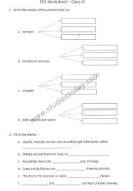 worksheets for class 3 28 templates lkg cbse maths worksheets