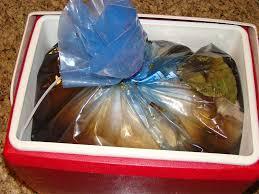 turkey brining bag turkey and brine in a ziploc big bag xl inside a cooler article